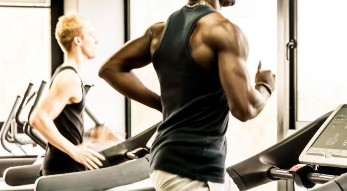 Treino HIIT esteira: Quer intensificar a corrida na academia? Confira qual o melhor para você!