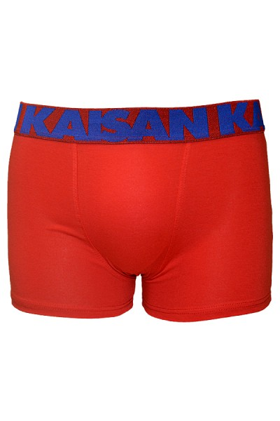 Kit com 4 Cuecas Boxer - Cotton 567 (AC)